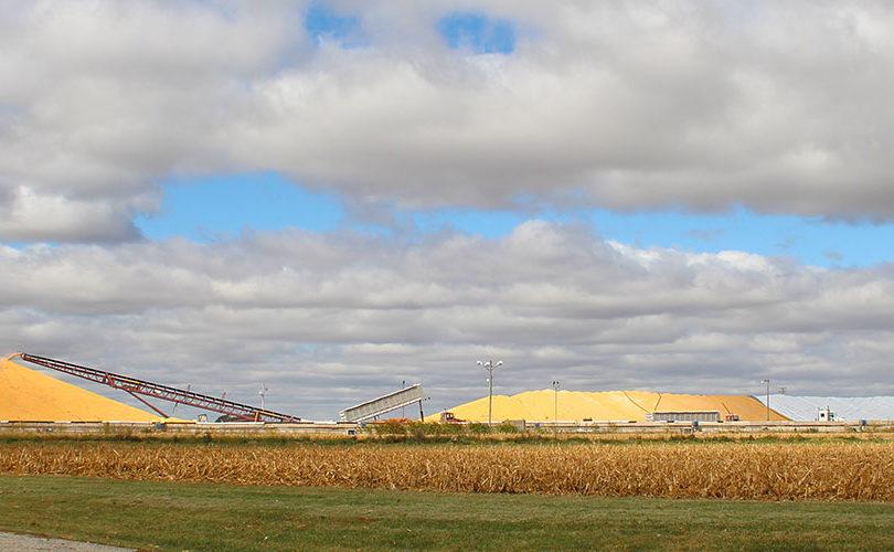 Grain Facility Storage Coops